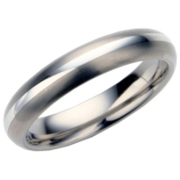 Ladies titanium wedding ring